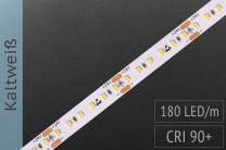 LED-Streifen mit 180 LED/m - 1.300 lm/m - kaltweiß 6.500K - IP67