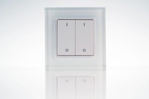 wall-mounted dimmer remote control, 2 zone, pushbutton